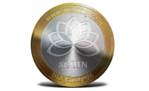 Wolung Coin Visualisation